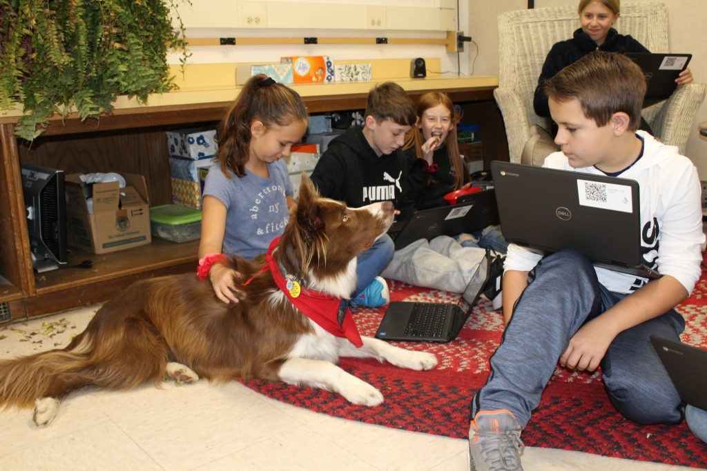 students use Chromebooks while seated on a carpet with a therapy dog in a classroom