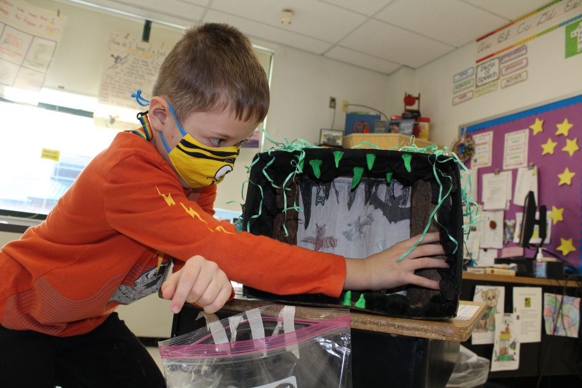 Hands-on project brings student learning to life during remote instruction