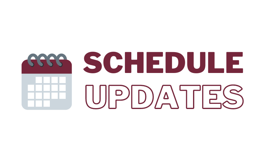 Hybrid learning schedule updates